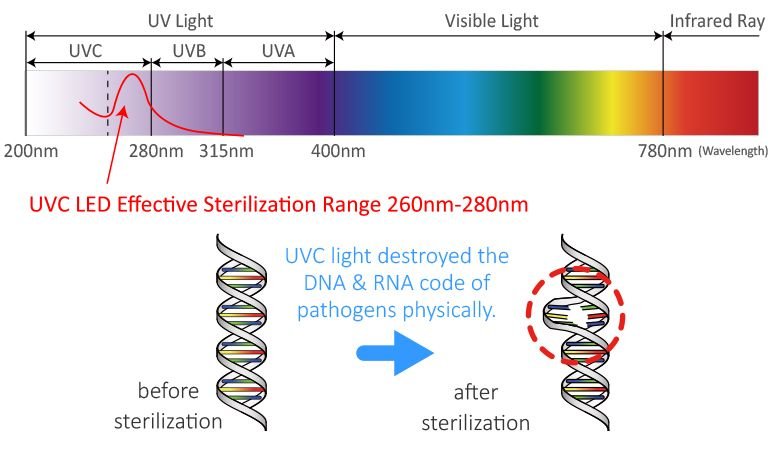 UVC LED technology, which is UV-C light in wavelength between 260nm and 280nm that damages the very DNA or RNA of microorganisms such as bacteria/viruses/mites and kills off germs in a matter of minutes to achieve the effect of sterilization for health.